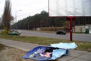 """""""Батькивщина"""" обвинила власти в массовом уничтожении своих билбордов"""