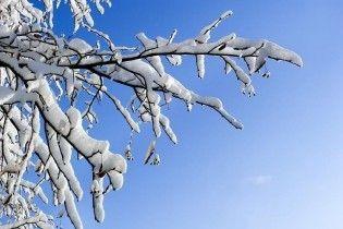 Погода в Украине на среду, 17 февраля