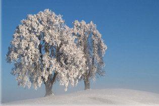 Погода в Украине на воскресенье, 24 января