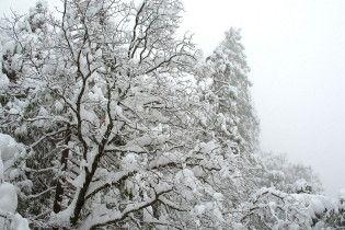 Погода в Украине на пятницу, 12 февраля