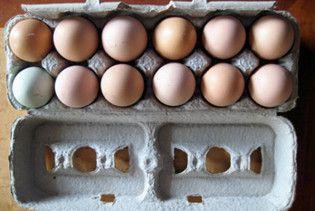 Мужчина убил пятерых человек из-за плохо сваренных яиц