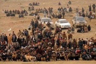 Смертник взорвал себя на собачьих боях в Афганистане