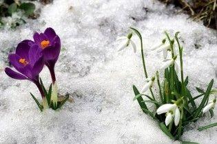 Погода в Украине на среду, 24 февраля