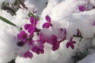 Погода в Украине на воскресенье, 7 марта