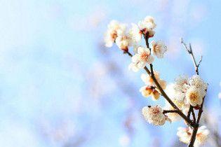 Погода в Украине на вторник, 30 марта