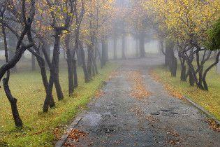 Погода в Украине на среду, 17 ноября