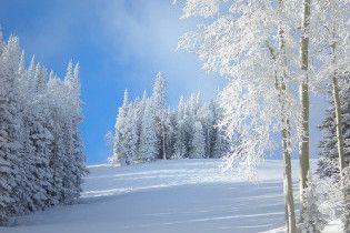 Погода в Украине на четверг, 28 января