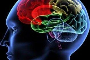 Политические взгляды можно определить по строению мозга