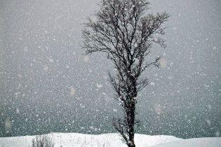 Австрию завалило снегом накануне дня летнего равноденствия
