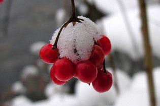 Через неделю в Украине выпадет снег