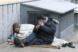 Московские бомжи съели почти всех городских чаек