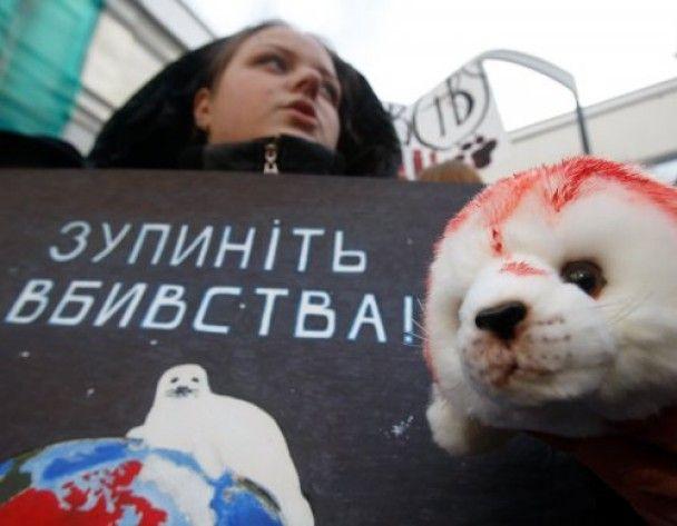Киевляне разыграли под посольством Канады кровавую охоту на тюленей