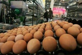 В появлении украинского диоксина в яйцах в Германии обвинили исландский вулкан