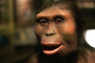 Предки людини регулярно їли побратимів