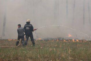 Уровень пожарной опасности в лесах Украины растет