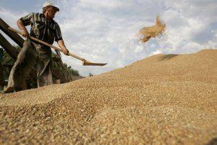 Кабмин продолжит ограничения экспорта зерна до июля