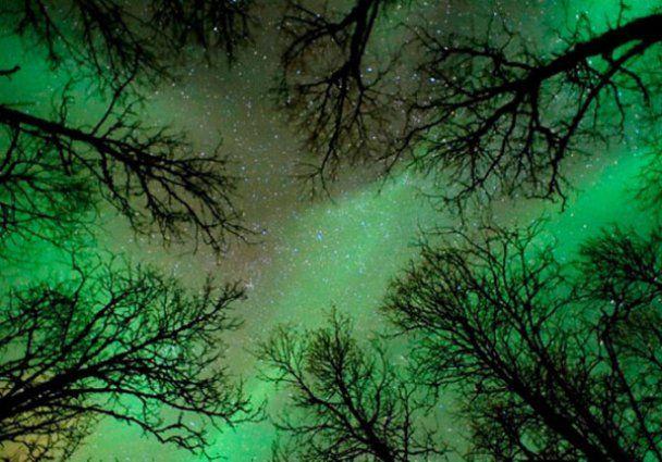 Найкращі астрономічні фотографії 2010 року