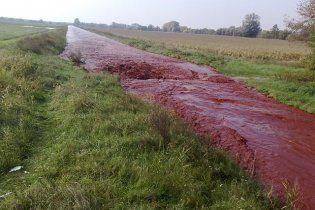 Україні загрожує отруйна вода з Угорщини