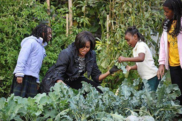 Мішель Обама зібрала врожай гарбузів і картоплі