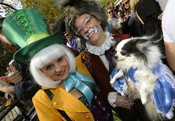 Собачий Хэллоуин в Нью-Йорке