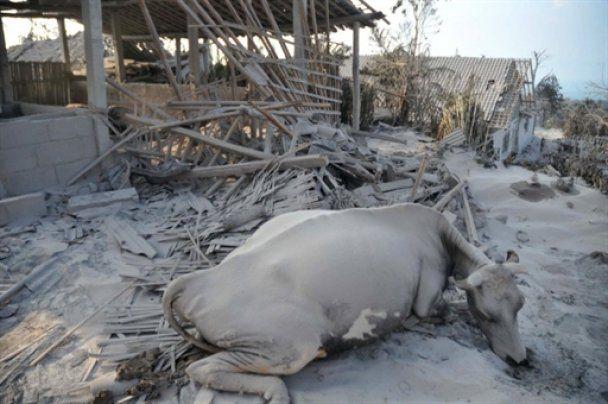 Мощное извержение вулкана в Индонезии: 25 жертв