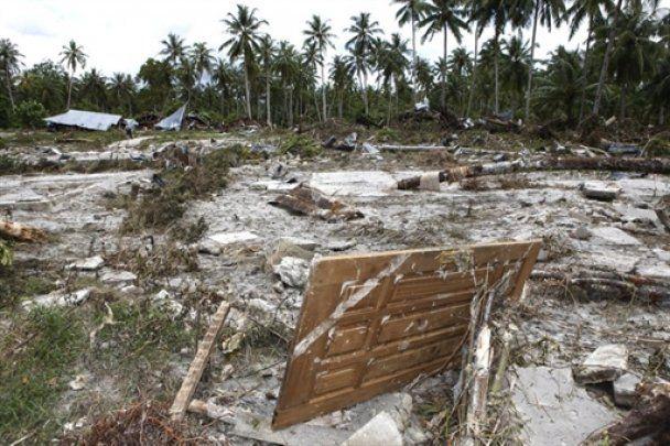 У гілках дерева в Індонезії знайшли немовля, яке пережило цунамі