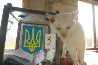 Азаров: победа оппозиции в некоторых областях не имеет значения