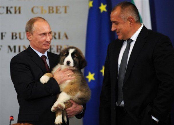 Путін розповів про будні свого песика