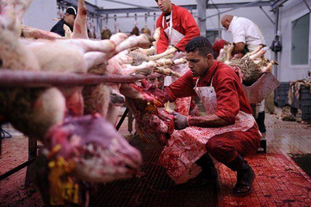 У світі різали баранів на Курбан-Байрам