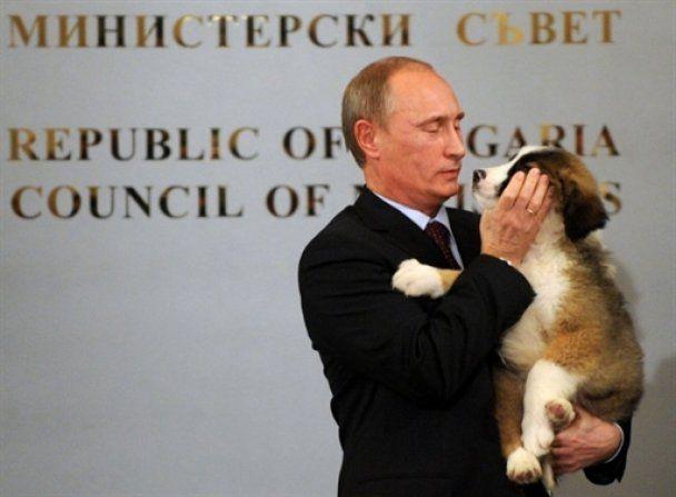 Цуценя Путіна за підсумками всеросійського конкурсу назвали Баффі