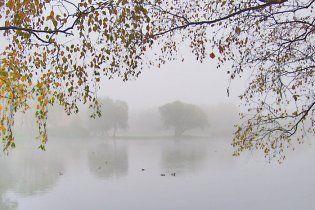 Погода в Україні на четвер, 25 листопада