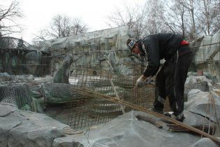 После проверок в киевском зоопарке начали строительство медвежатника