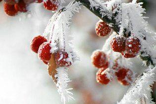 В Україні мороз до – 25 і на дорогах дуже слизько