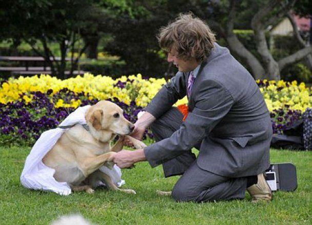 Молодой австралиец женился на своей собаке