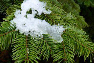Погода в України на суботу, 4 грудня