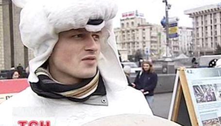 На Майдане разгуливали белые медведи