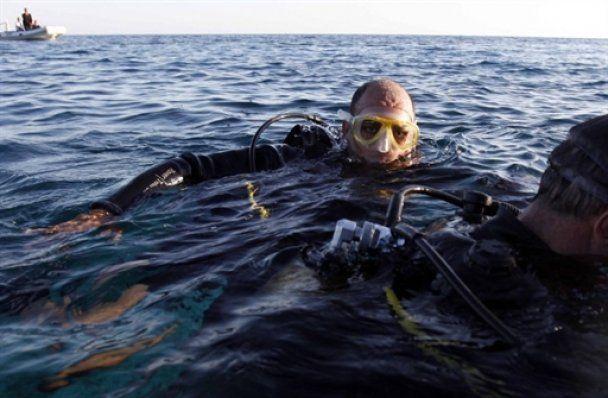 В Египте подозревают, что акул-людоедок уже несколько