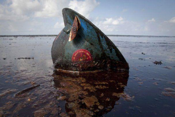 Найкращі фотографії 2010 за версією Reuters