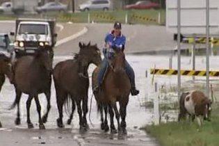 Тисячі австралійців покинули свої будинки через повені