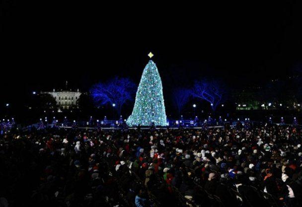 Обама с семьей, тещей и собакой зажгли главную елку США