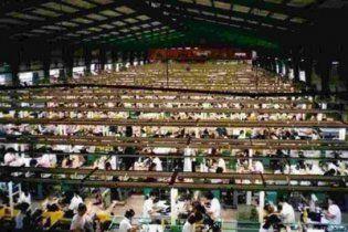 У Китаї директор благодійного фонду продавав душевнохворих у рабство