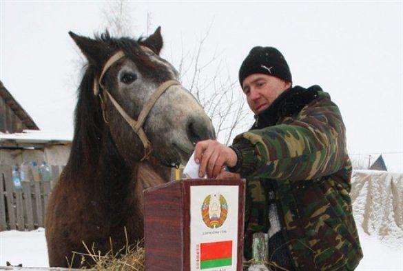 Вибори в Білорусі_8
