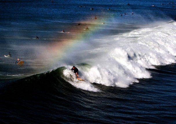 Яркие моменты 2010 года от Los Angeles Times