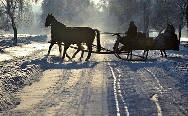 Неделя в фотографиях. 20-26 декабря