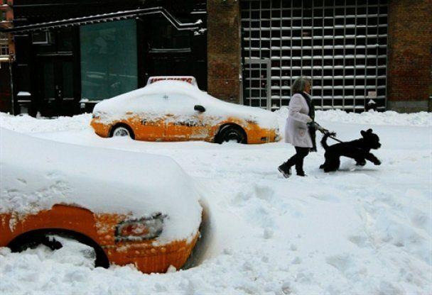 США понесли убытки в 100 млн долларов из-за снежных бурь