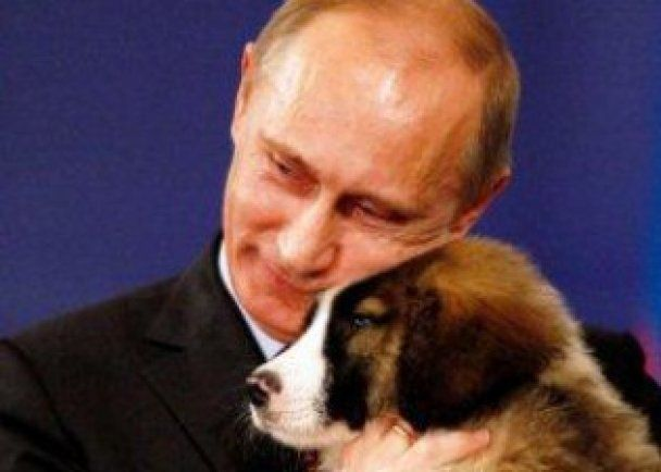 Новогодние каникулы Медведев проведет на лыжах, а Путин со своими песиками