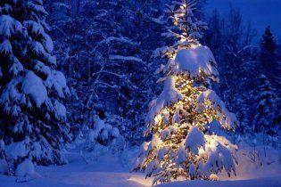 Погода в Украине на понедельник, 3 января
