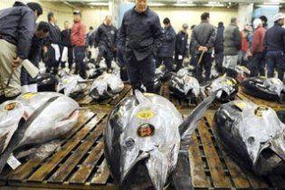 Гігантського тунця продали за рекордні 400 тисяч доларів
