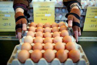 Кожен п'ятий німець припинив їсти яйця, боячись діоксину