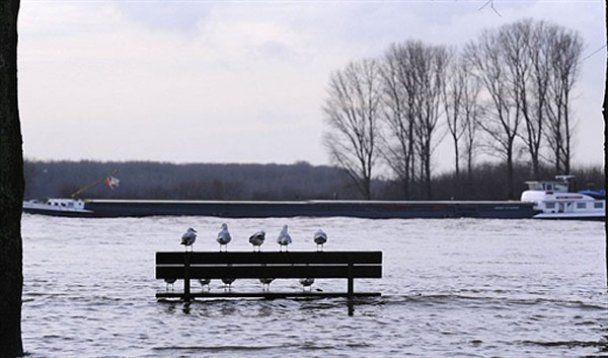 10 січня у фотографіях